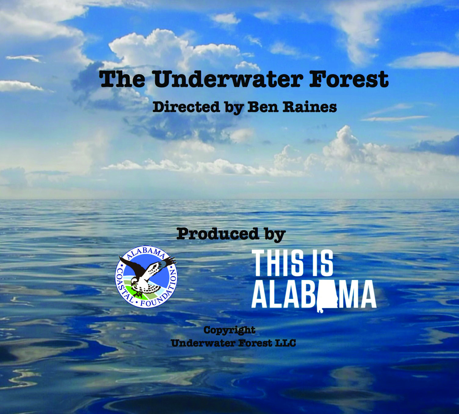 Underwater Forest DVD Cover.jpg