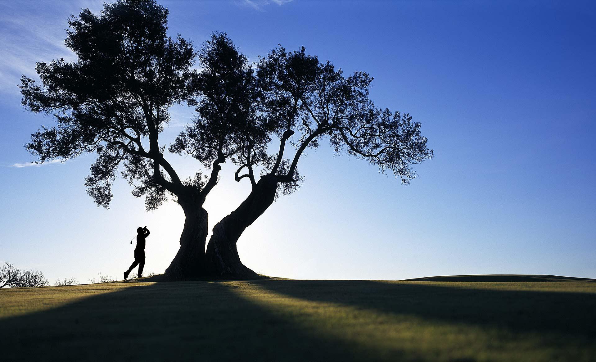 Easton_golfer_01_V2_web.jpg
