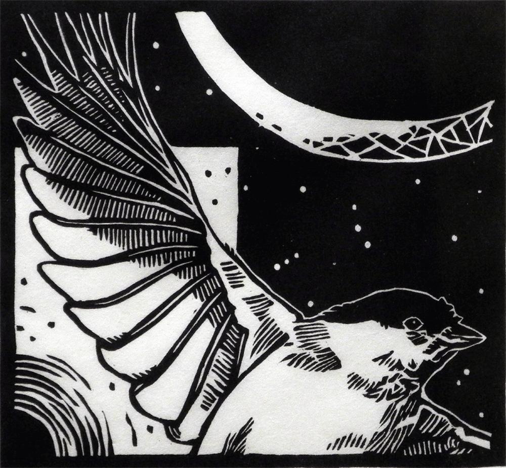 Avian Eclipse