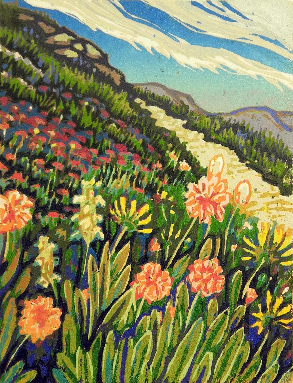Mt. Wheeler Wildflowers