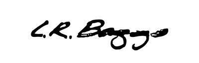 LR-Baggs-Logo.jpg