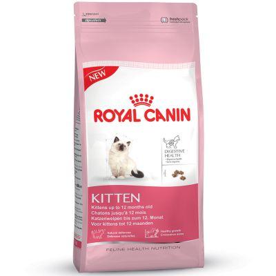 royal canine kitten.jpg