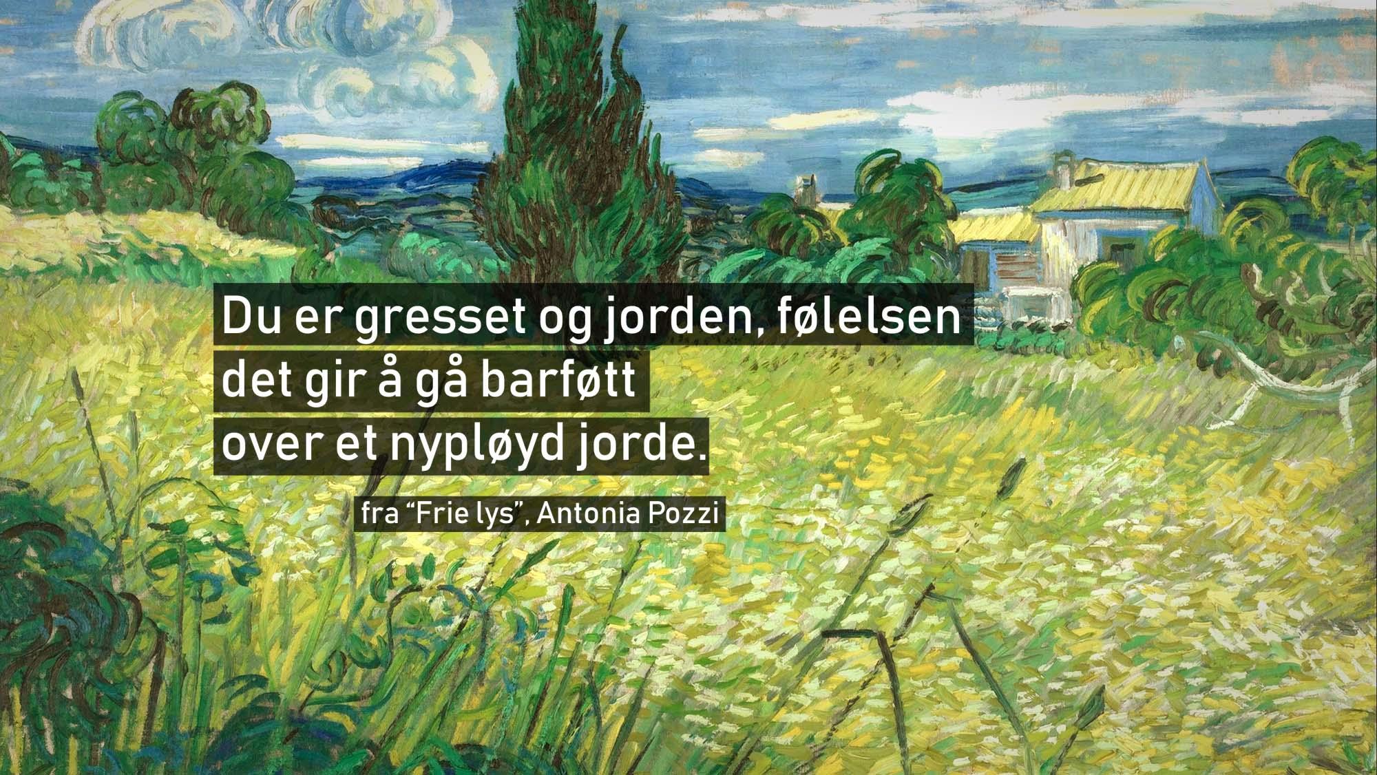 Bakgrunnsmaleri:  Green Fields , Vincent van Gogh (Wikimedia Commons)
