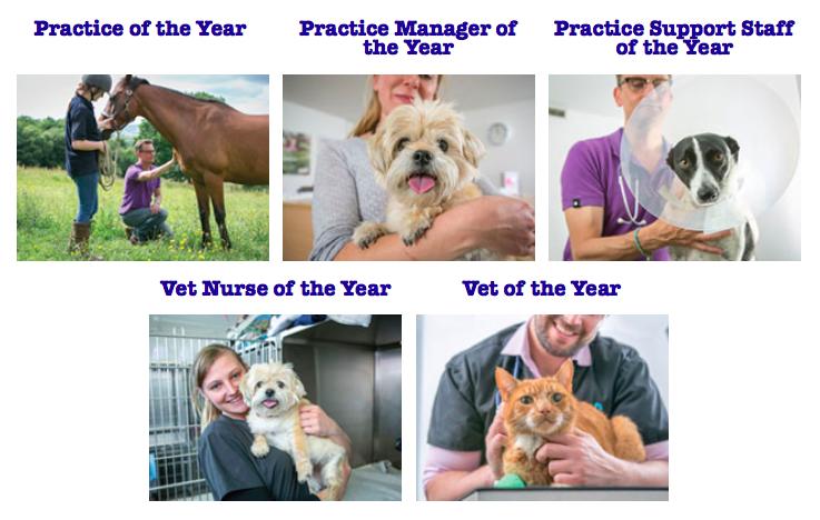 lomond-vets-pet-plan-awards-2018.png