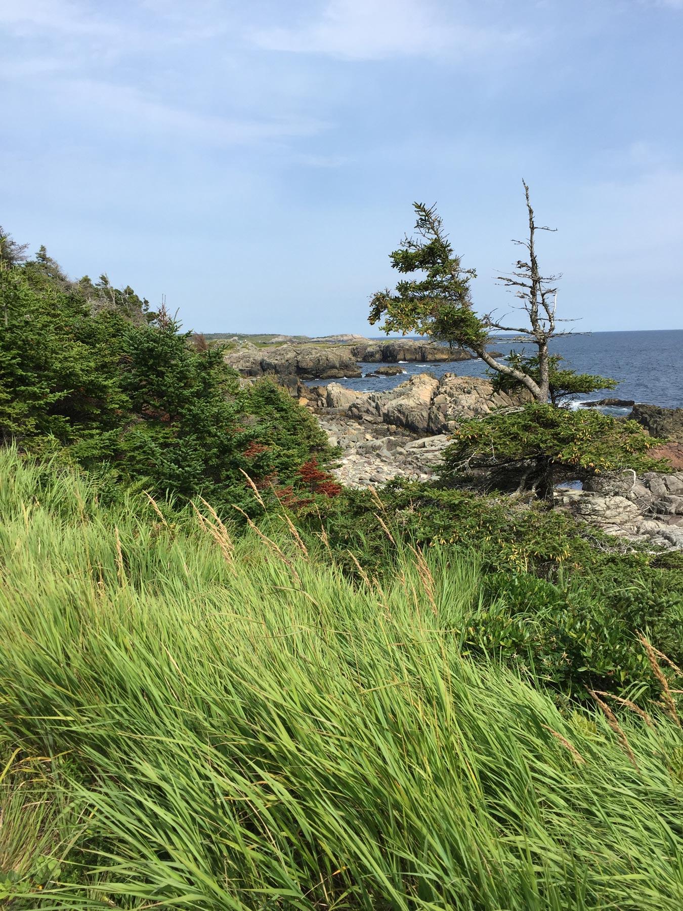 21-09-2018-Cape-Breton.jpg