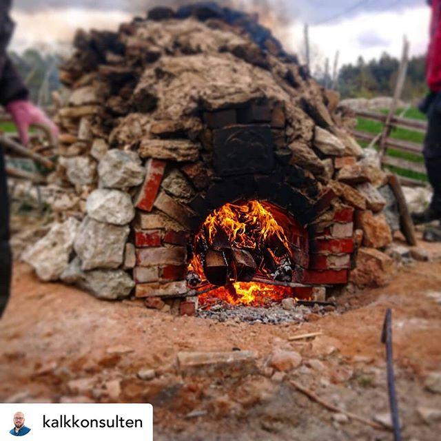 Här på Gotland har vi en speciell relation till kalk. Det bränns kalk i utbildningssyfte men produceras också av nätverkets medlemmar @buttlekalk och @byggnadshyttan. Igår var @kalkkonsulten och hälsade på studenterna på byggnadsvårdsutbildningen som  tände en mila som ska brinna i minst 3 dygn  Posted @withrepost • @kalkkonsulten På jobbet är det kalkbruk, fasader, renoveringar och ibland kalkbränning. Vad skönt att man är ledig ibland, så att man kan åka och kolla hur andra gör när de bränner kalk... 😁😁 Högskolan på Gotland bränner en kalkmila per termin, en ganska unik upplevelse för studenterna!