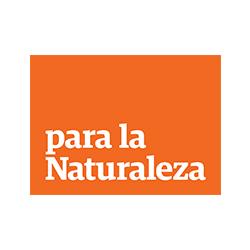 pln-logo.jpg
