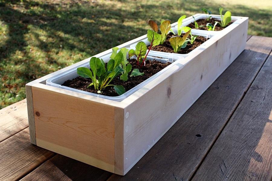 wooden-planter-boxes-perth.jpg