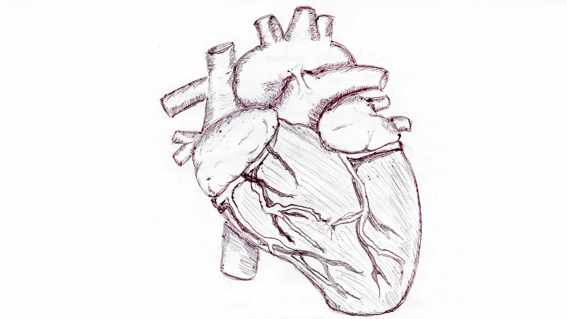Heart-Sketch-for-Web.jpg