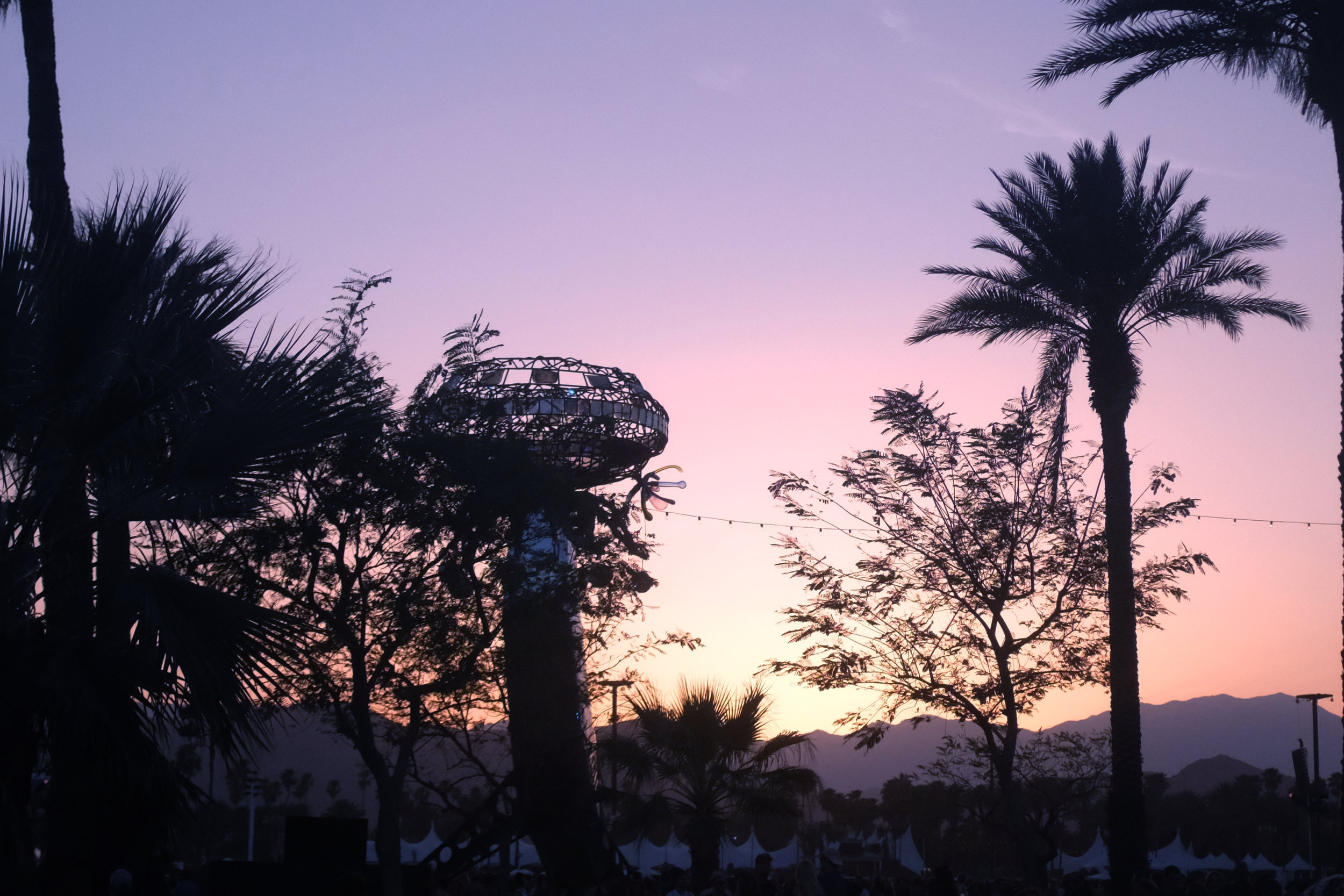 SunsetGrounds.jpg