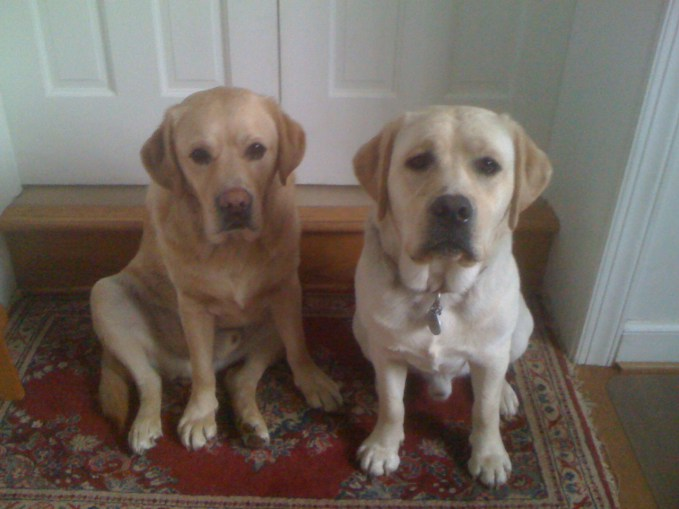 Keeper and Hudson