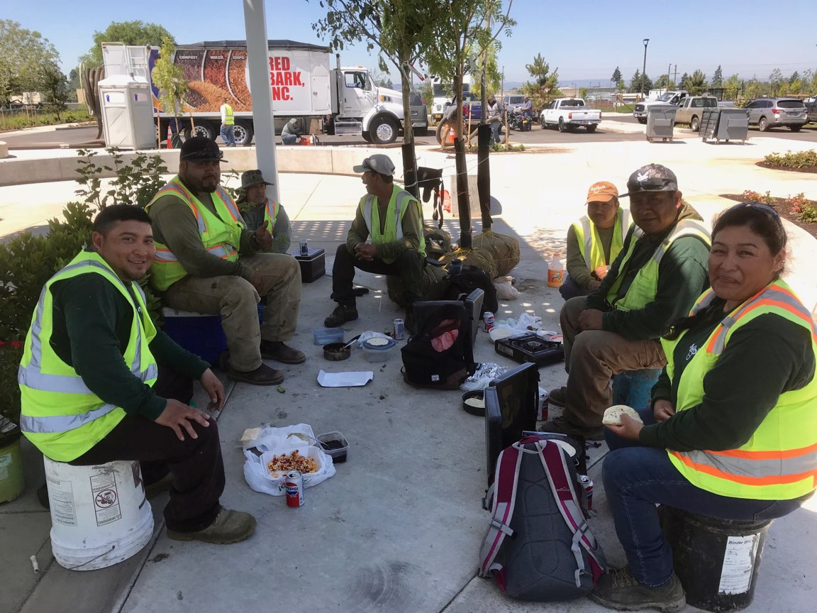 Image Description: Seven Verde Landscape Crew Members sit in a circle eating lunch in the shade at Cully Park.