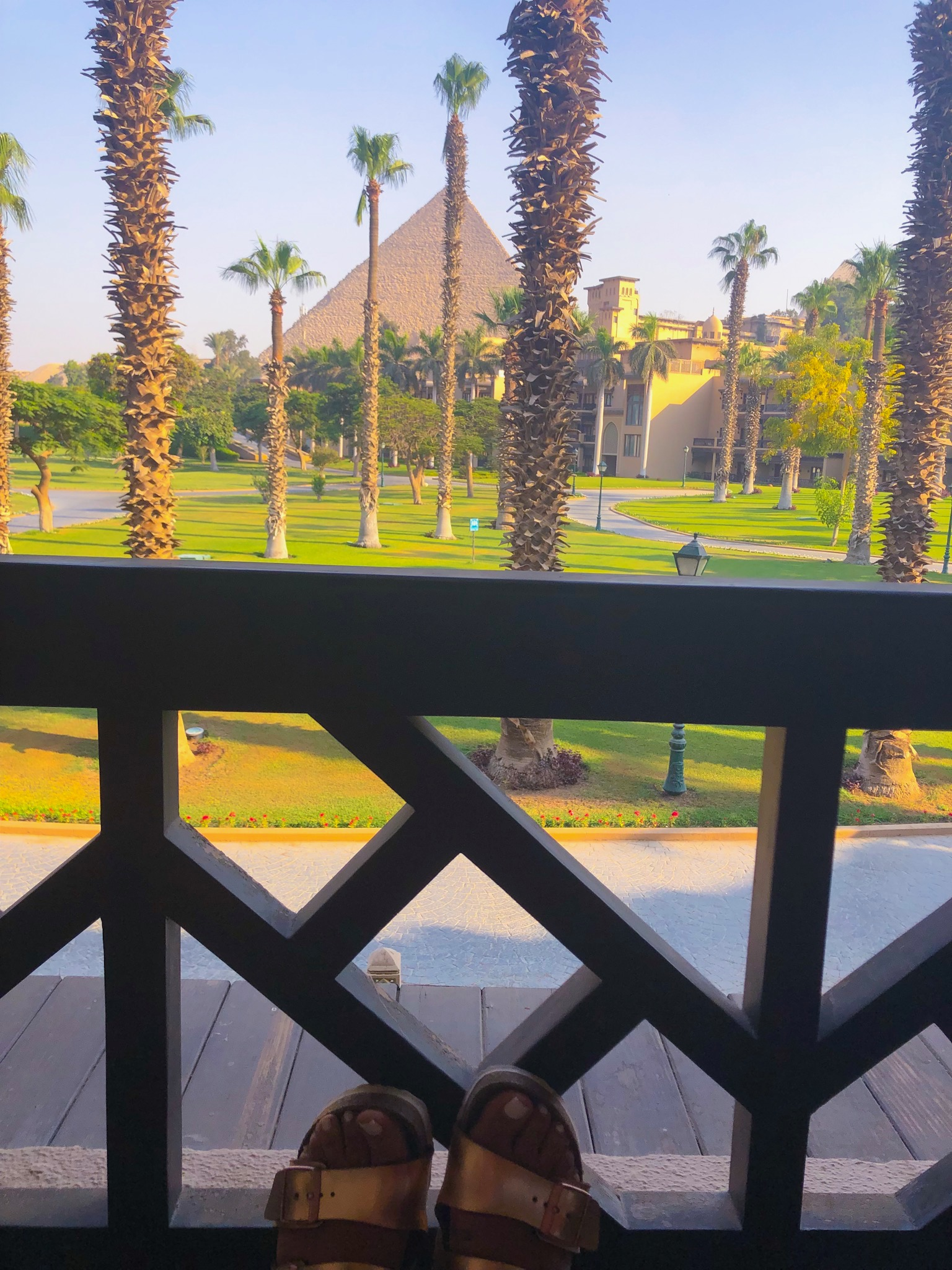 View of the pyramids from my hotel room balcony.