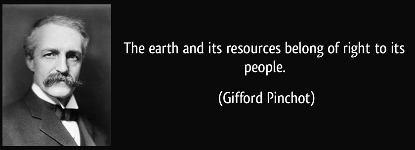 Gifford Pinchot 2.1.jpg
