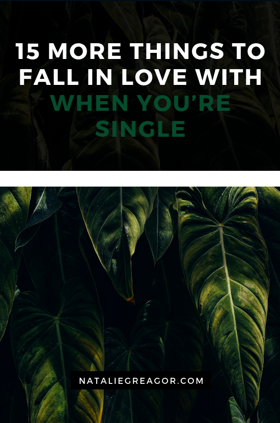 15 MORE THINGS TO FALL IN LOVE WITH WHEN YOU'RE SINGLE - NATALIE GREAGOR-2.png