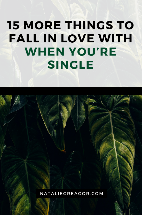 15 MORE THINGS TO FALL IN LOVE WITH WHEN YOU'RE SINGLE - NATALIE GREAGOR.png