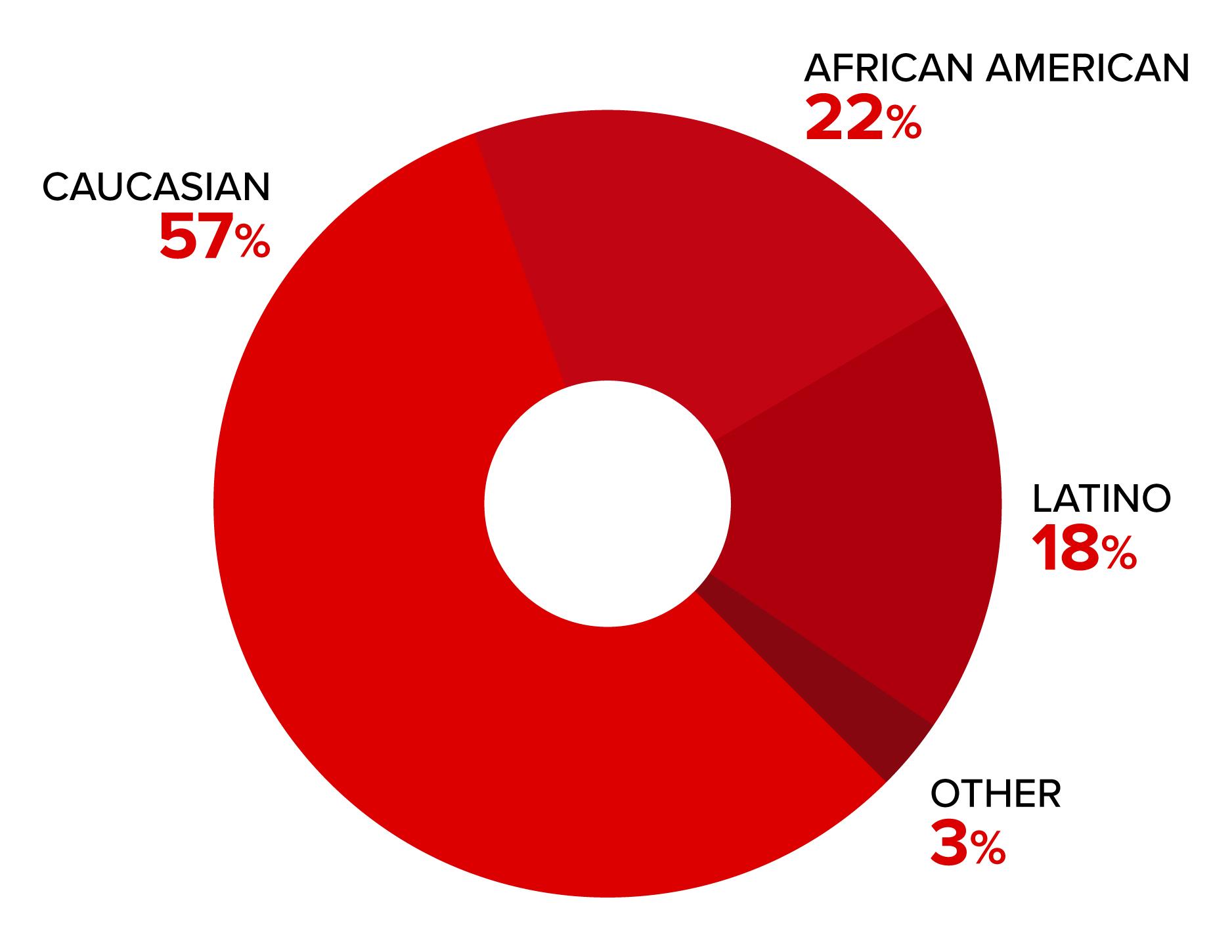 Demographic-Ethnicity.jpg