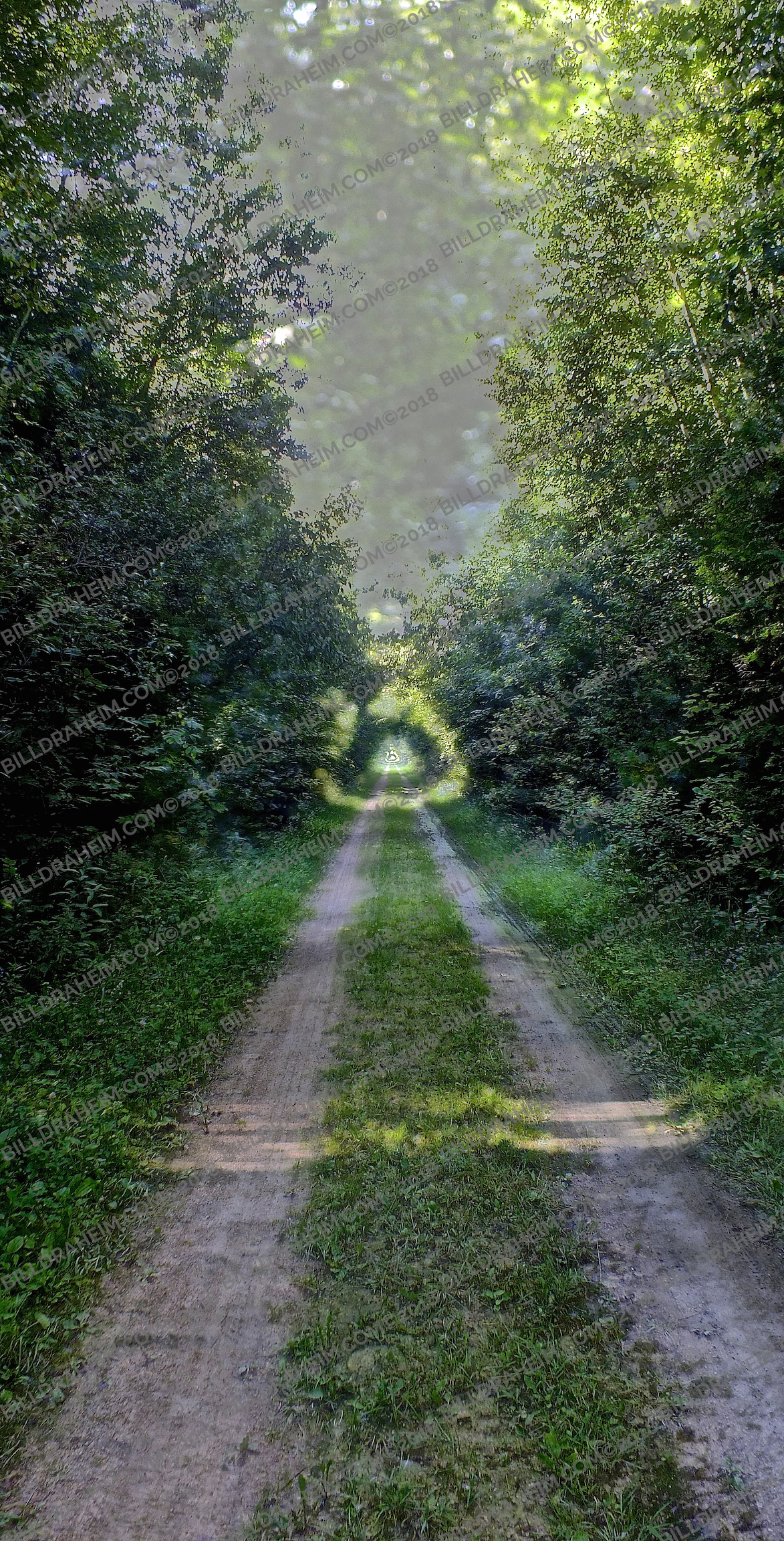 ROADS YOU'LL NEVER TRAVEL