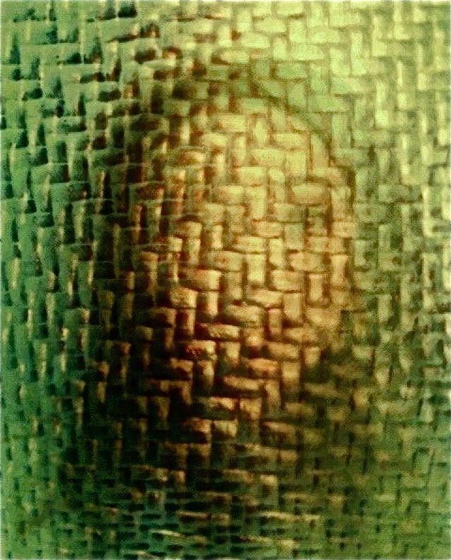 Elizabeth Moans Picasso By @billdraheim @flip_phone_bill #incamera #flipphoneart #flipphone #nophotoshop #mobiography #mobiography_challenge_70 #green