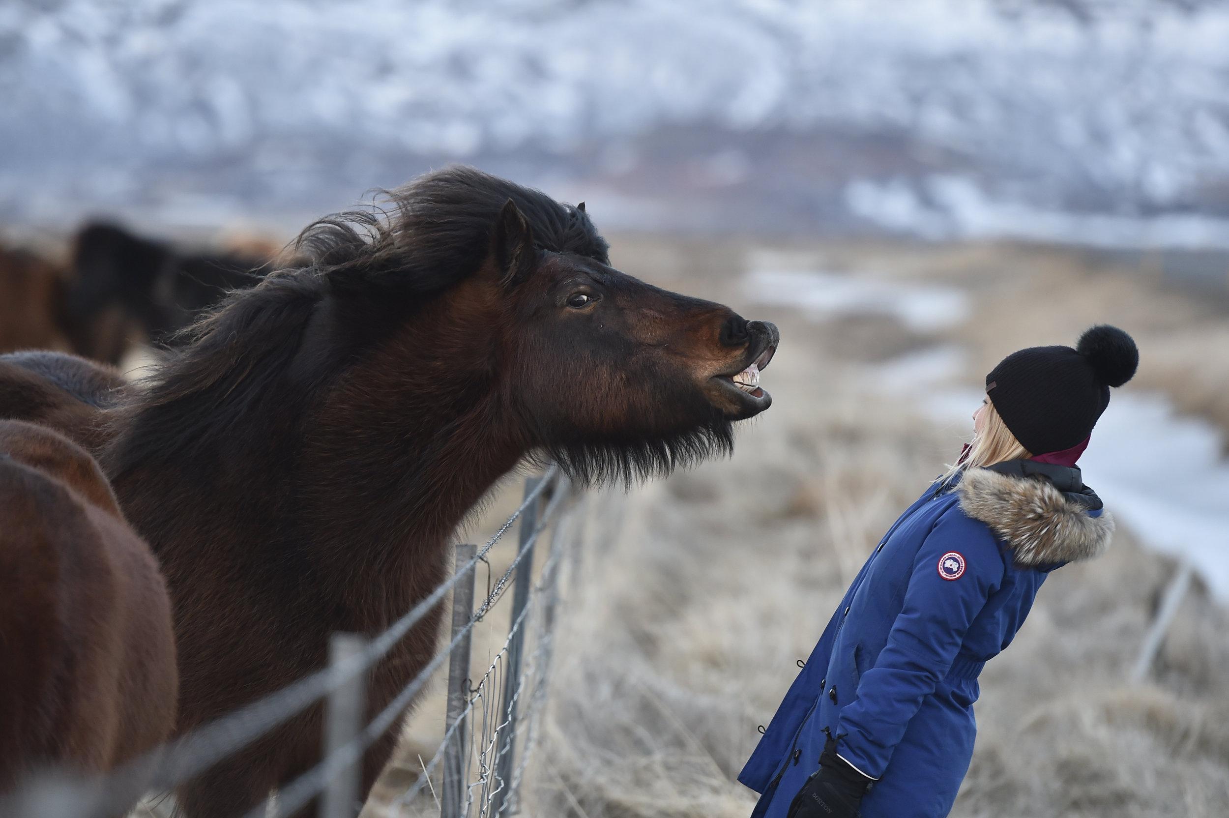 Icelandic Showdown - Shot with Nikon D4S - Iceland
