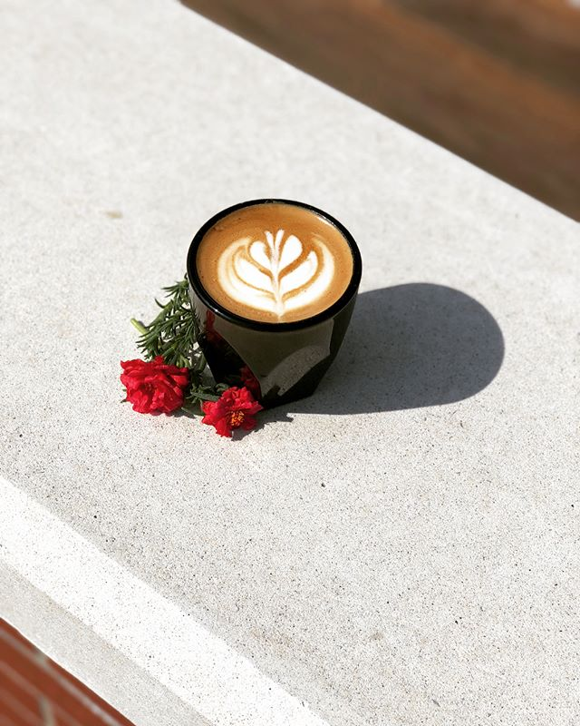 Beautiful Cortado on a beautiful day ❣️ by @allyson_bowen #coffeebreak #foreveryum #arkansas #lifeisgood #sharingiscaring #espresso #baristalife #latte #latteart #coffeeshop #coffeeculture #barista #cafelife #multiroaster #curatedcoffee #forumcoffee #bentonville #onthetable #cortado #summervibes #bythepeopleforthepeople #espressobar #teabar #specialtycoffee #featured #yolo #blessed