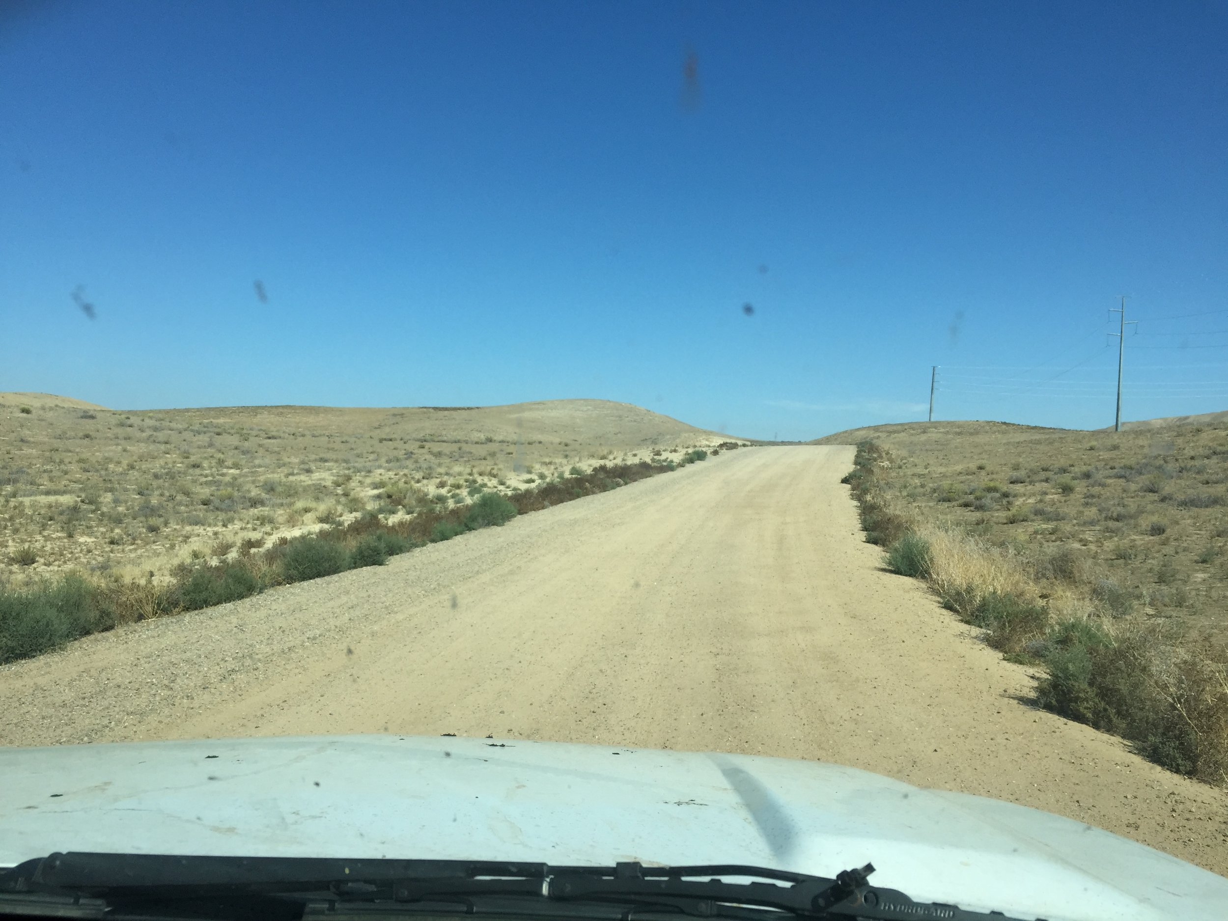 """The world of IVM: Dirt, dirty windshields, and """"dirty"""" invasives"""