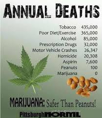 Marijuana deathcoutn.jpg