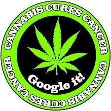 Marijuana goole image.jpg