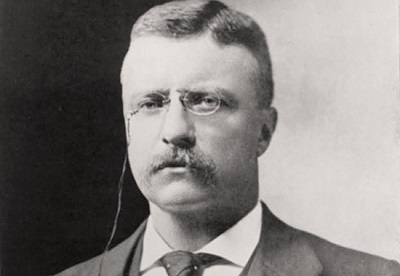 """""""Comparison is the thief of joy""""   - Theodore Roosevelt"""