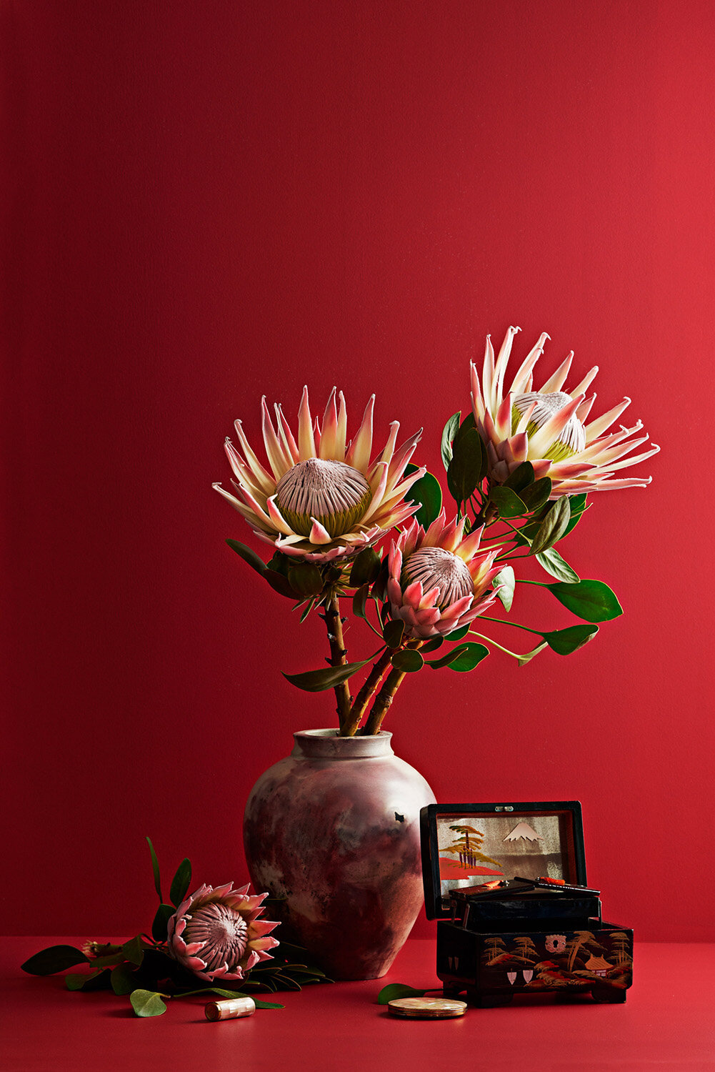 IVDM Photography_NZ Flowers Weeks_Red.jpg
