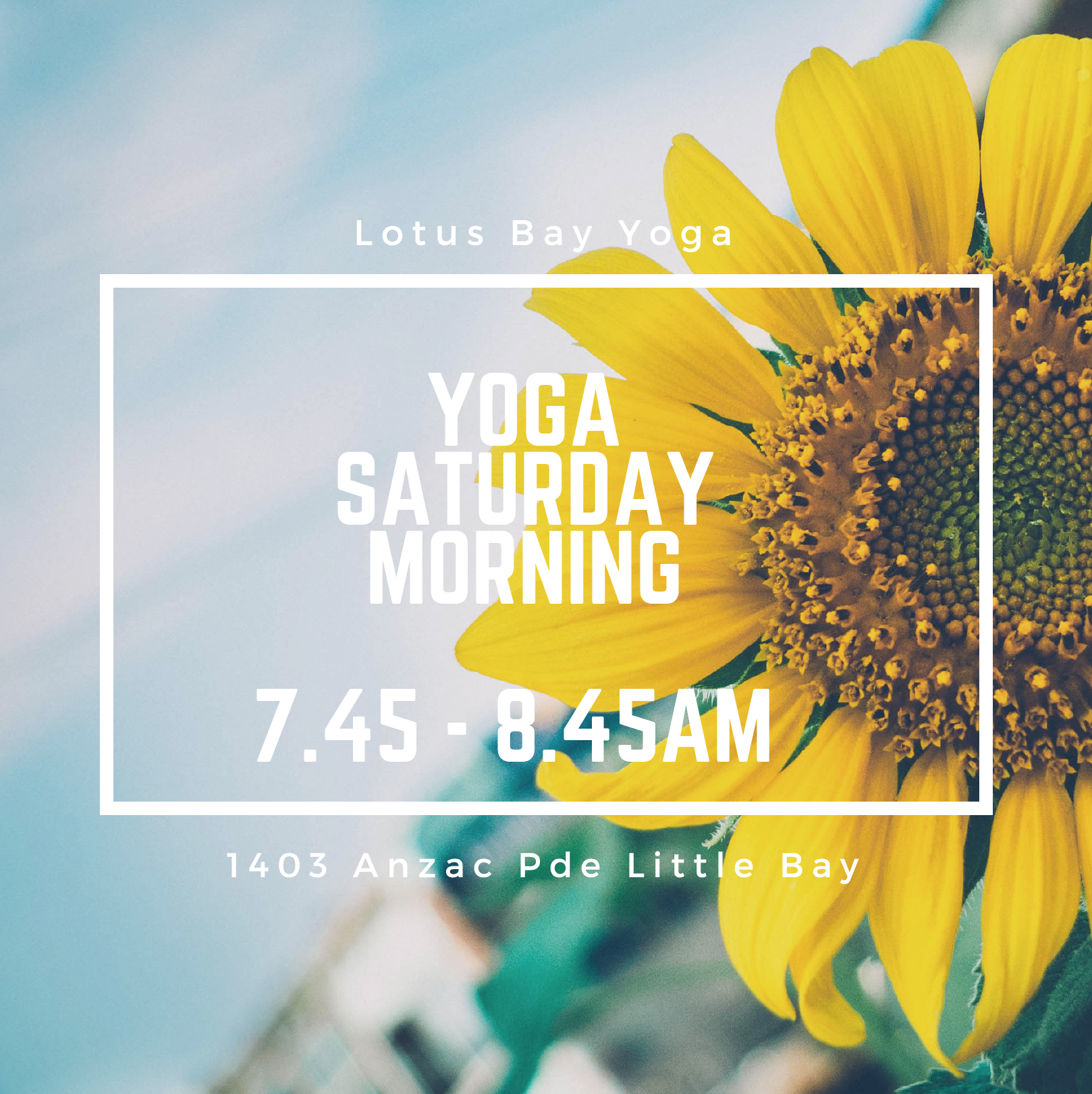 Lotus Flow with Amy Weidlich with Lotus Bay Yoga at Driftwood Living 7.45am Saturdays