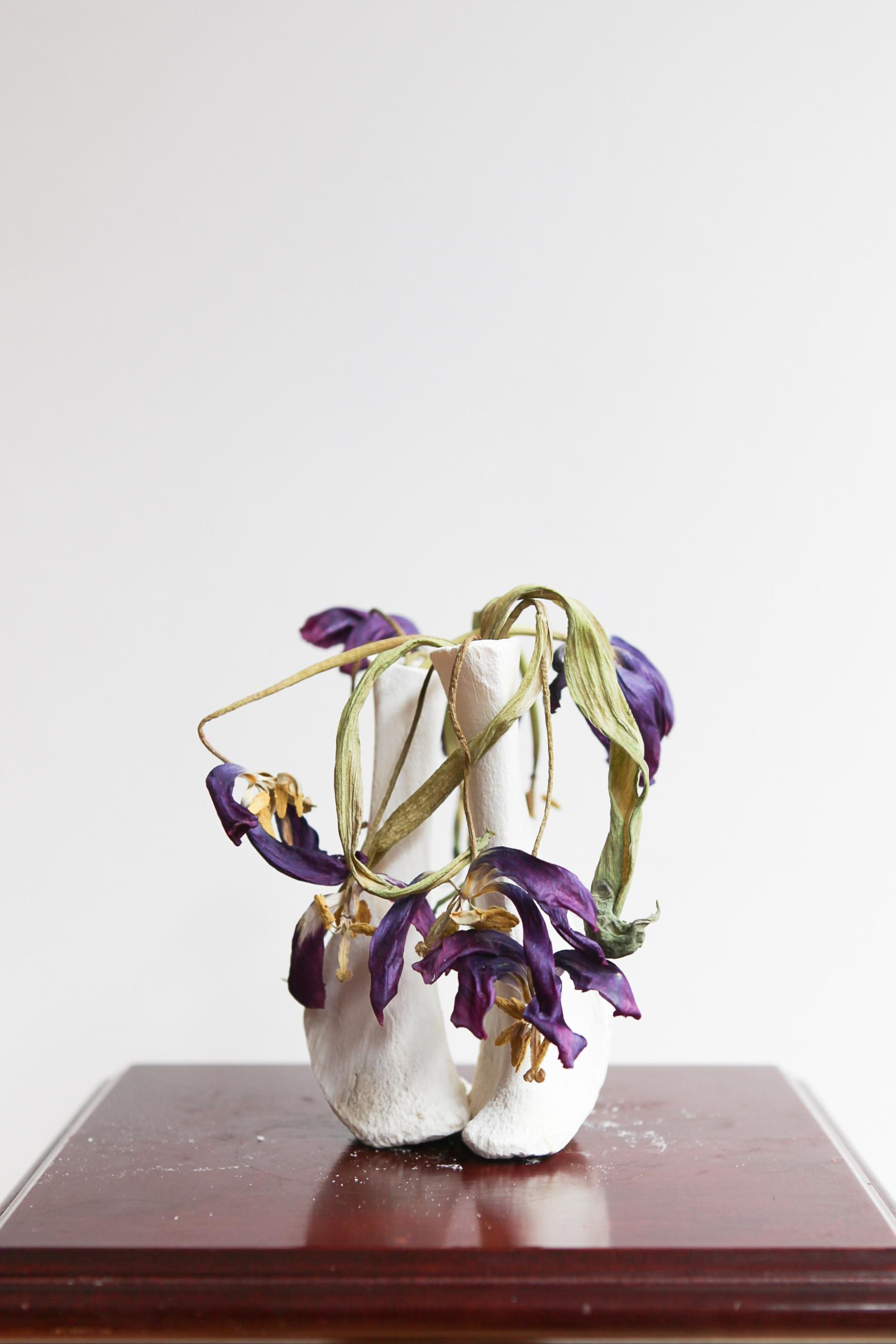 Emma+Witter%2C+Tulips+.jpg