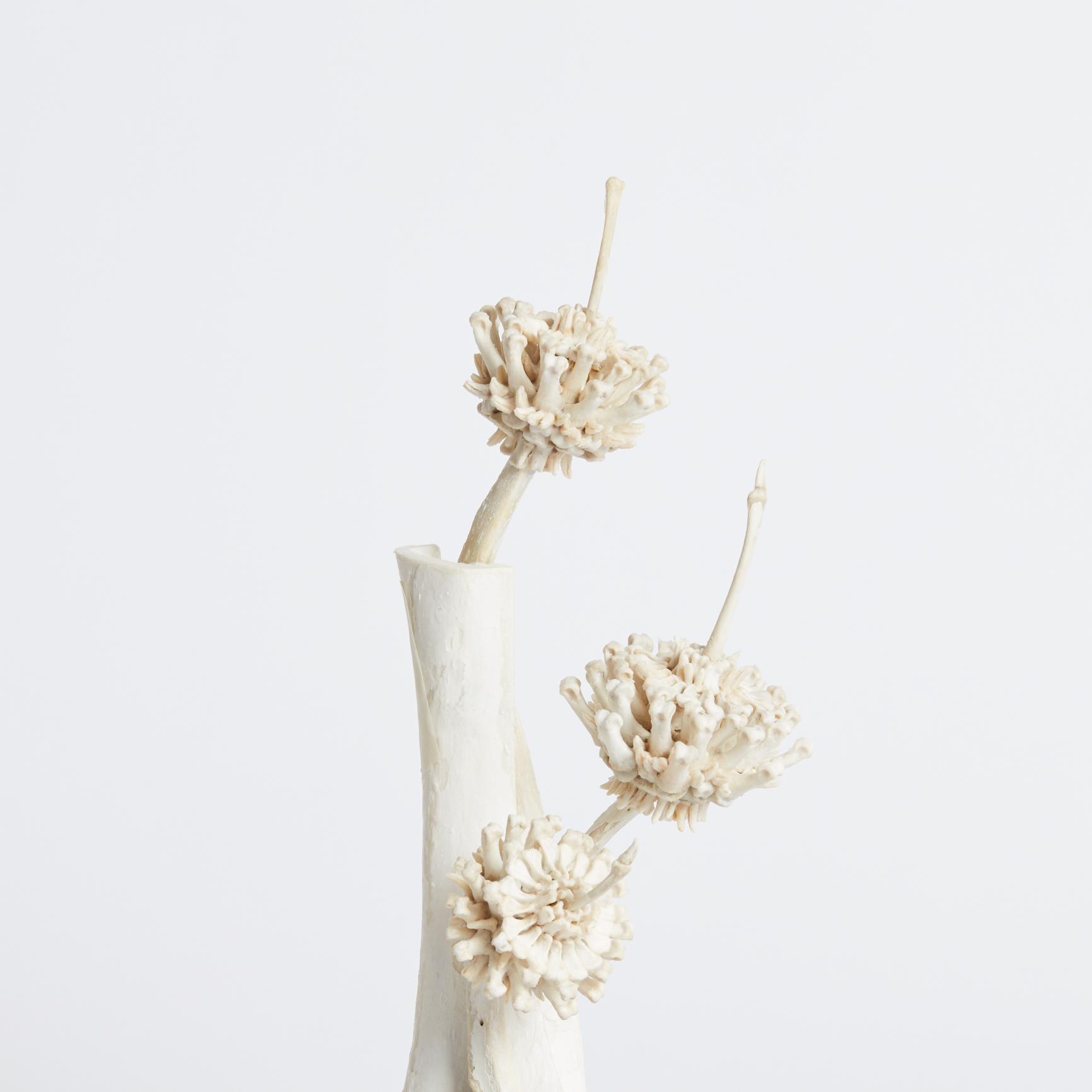 Emma Witter, From Bloom 2.3, Bones on Wooden Base, C.Charlotte Oldman.jpg