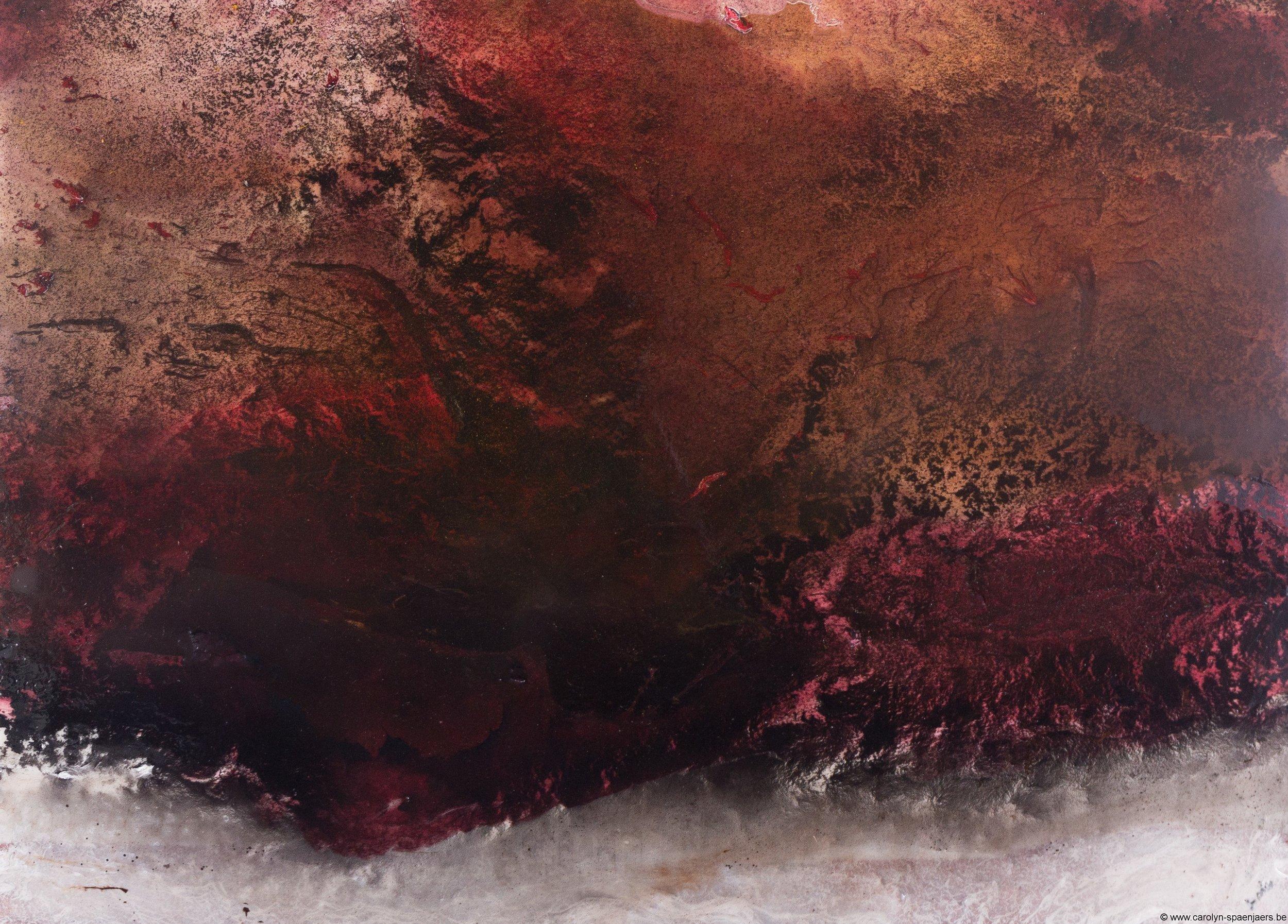 work by Carolyn Spaenjaers