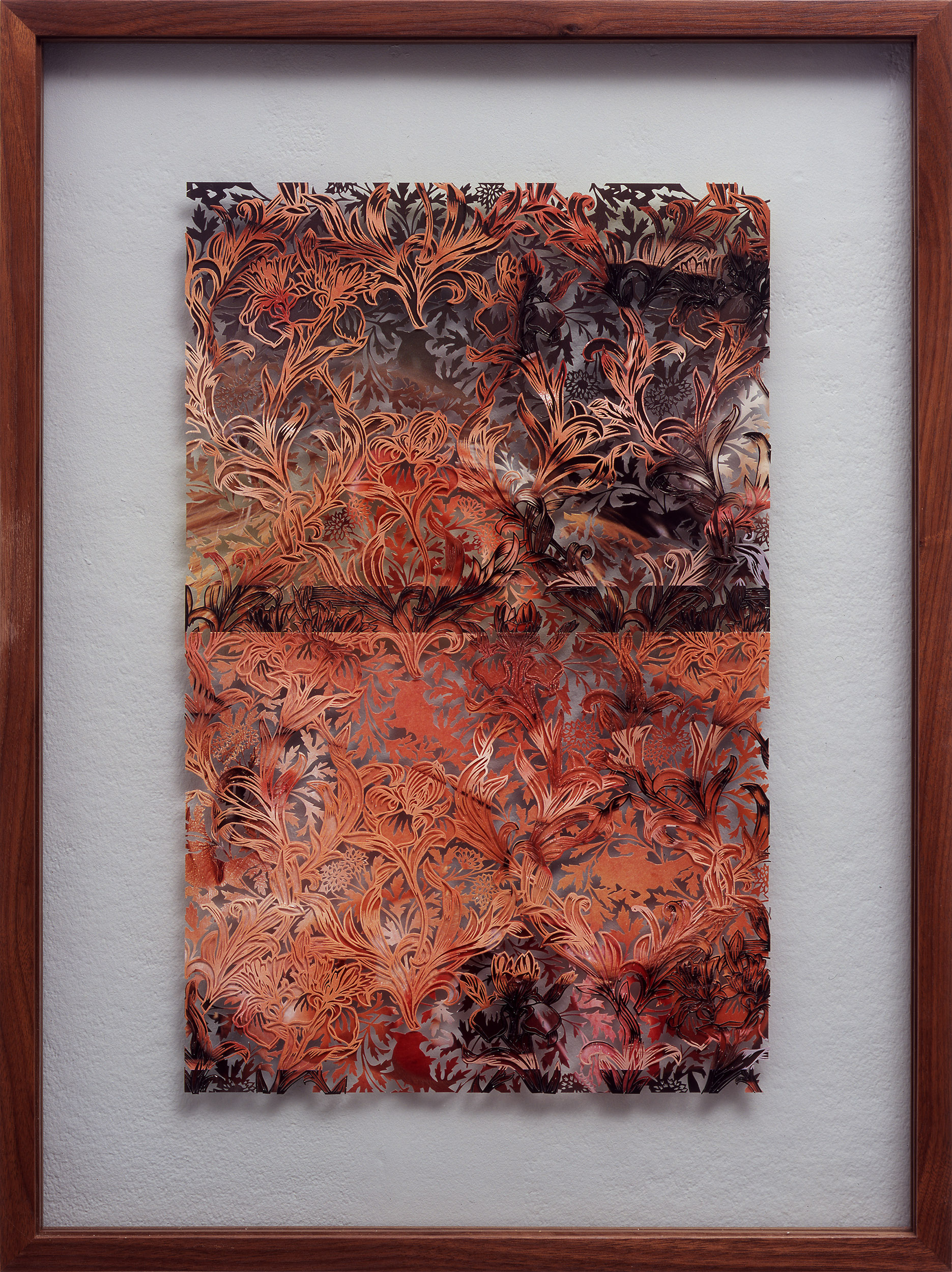 IRis a3, 2005