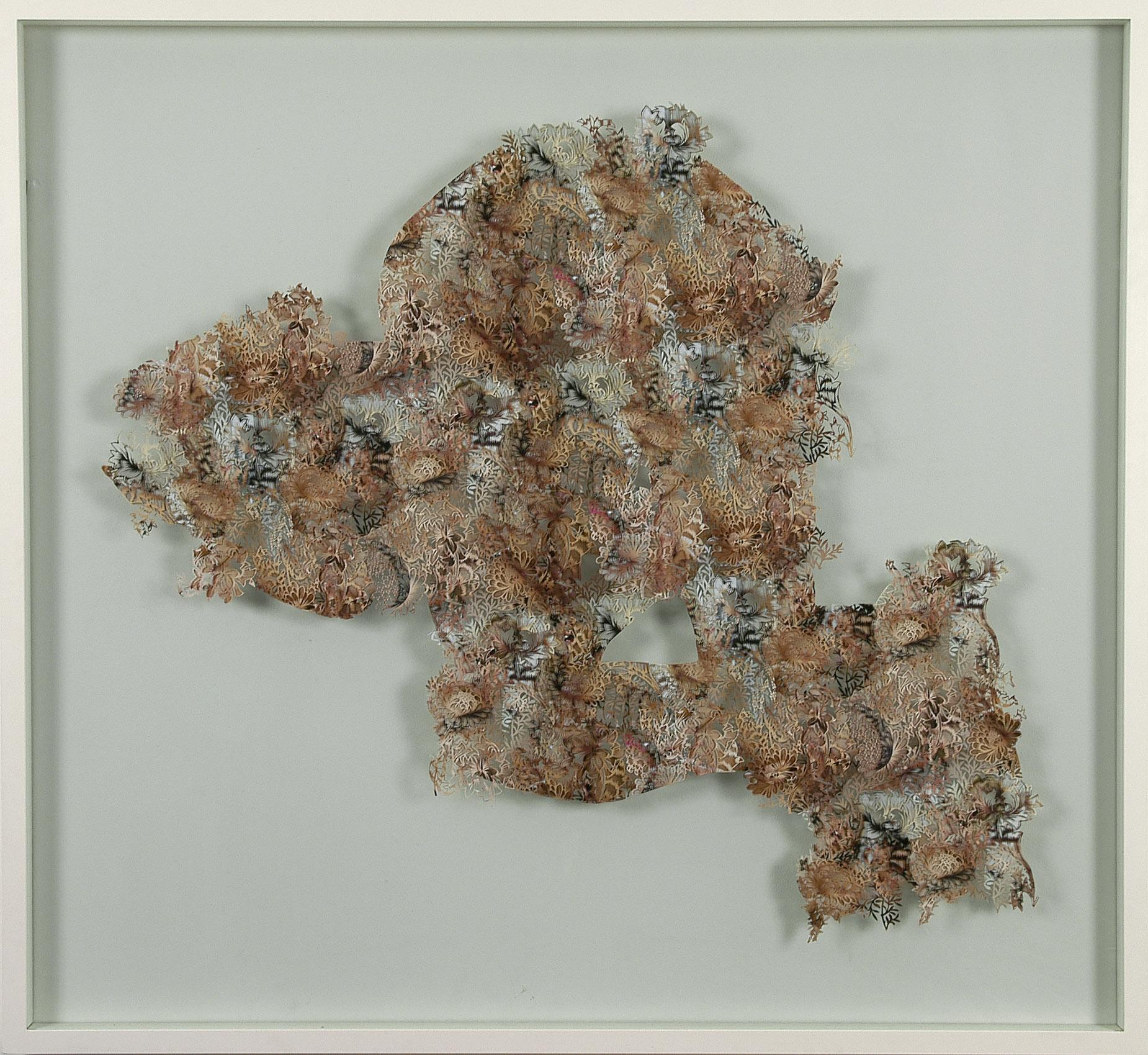 chrysanthemum, 2006