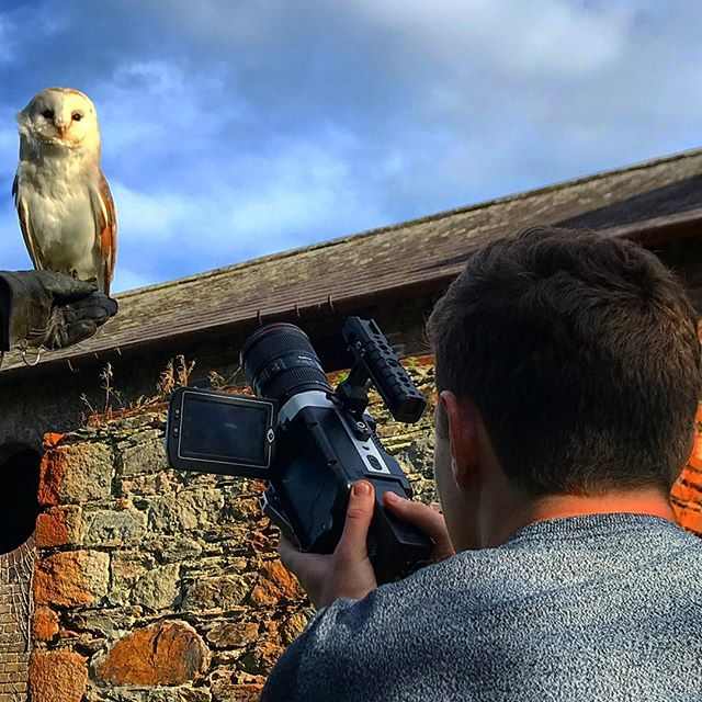 @theo_jebb using the phantom miro to catch super slow motion shots of Lucy the barn owl. ☘️ • • • • • • • • • • • • • #ireland_gram #wicklow #wildlife #filmphotography #phantommiro #superslowmotion #cameraman #landscape_lover #nature #barnowl #owlsofinstagram #potd #landscape_lover #travel #travelblogger #wildlifephotography #productioncompany #sondervisuals #nature_lovers #barnowlsofinstagram