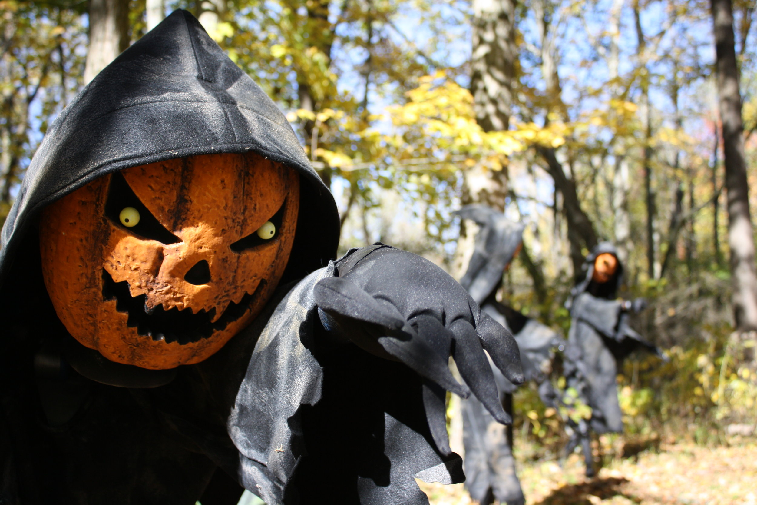 Carlisle Reservation Halloween Fair 2020 Lorain County Metro Parks