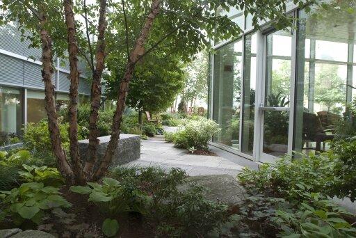 abrahms-garden.jpg