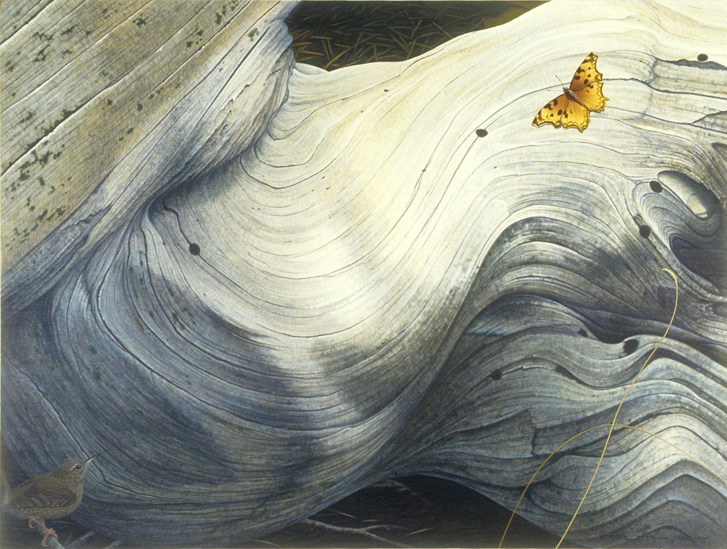 White Throated Swifts.jpg