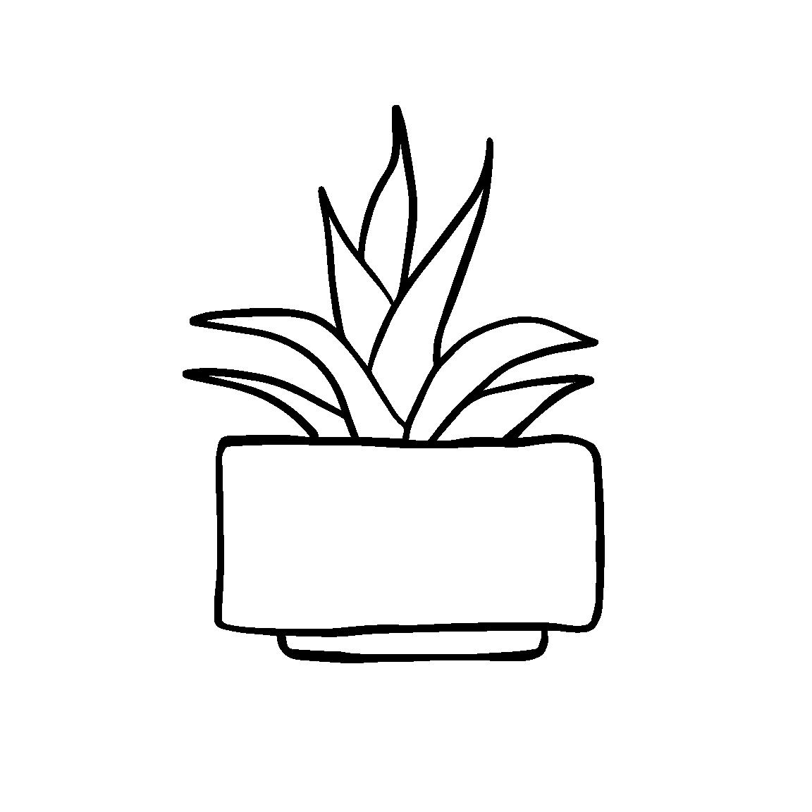 Cactus_Black_5.png