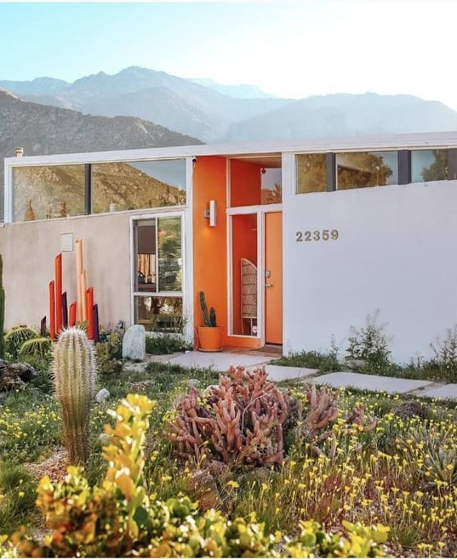 """""""Polish comes from the cities; wisdom from the desert."""" -Frank Herbert PC: @modernism_week . #thique #thiquehaircare #thiquehair #thiquehairproducts #thiquehairsolutions #naturalproducts #quotes #desert #minimalism #palmsprings #cactus #cacti #tangerine #orange #white #mountains"""