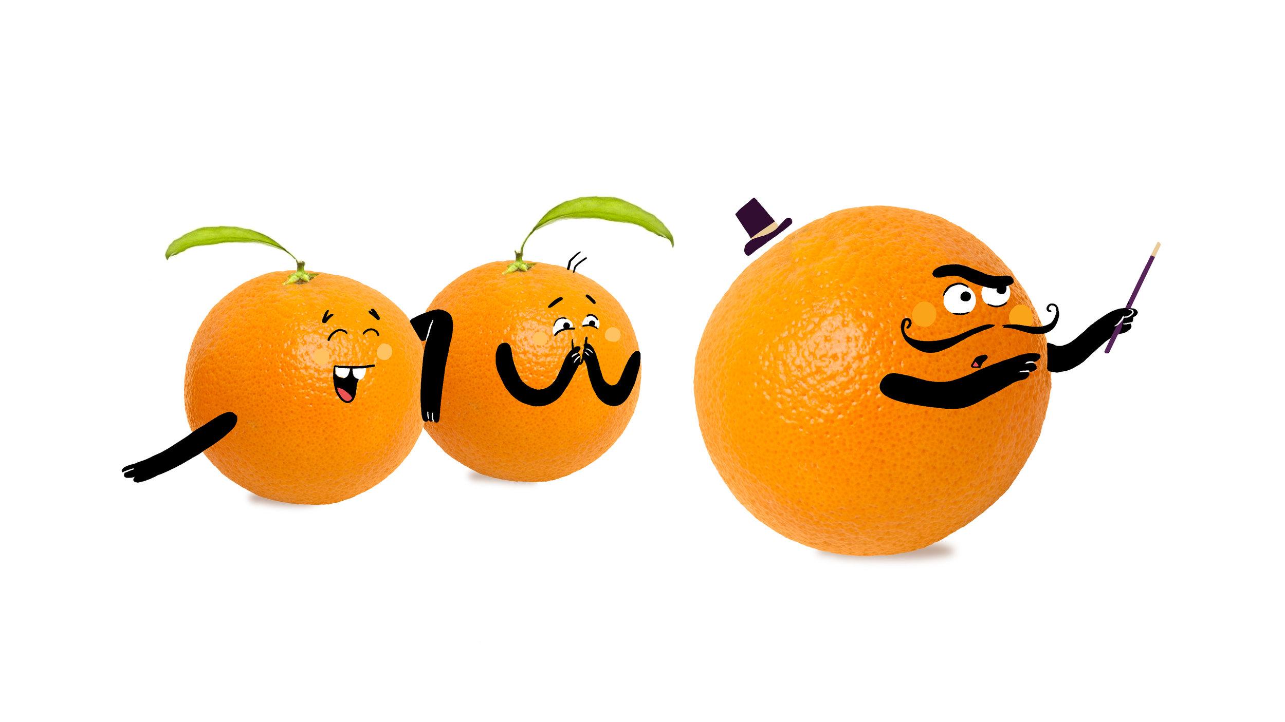 MER17_01_Oranges2.jpg