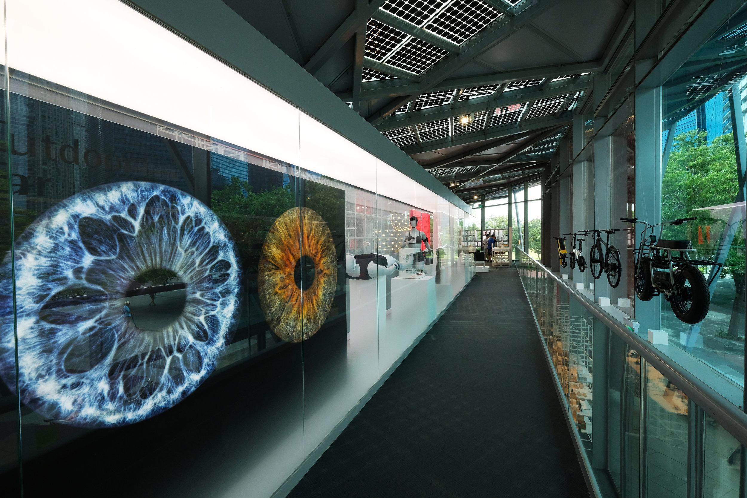 02_Museum Gallery - Human-Nature 2.JPG