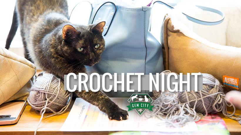 1.24.19_crochetwithcats_cover.jpg