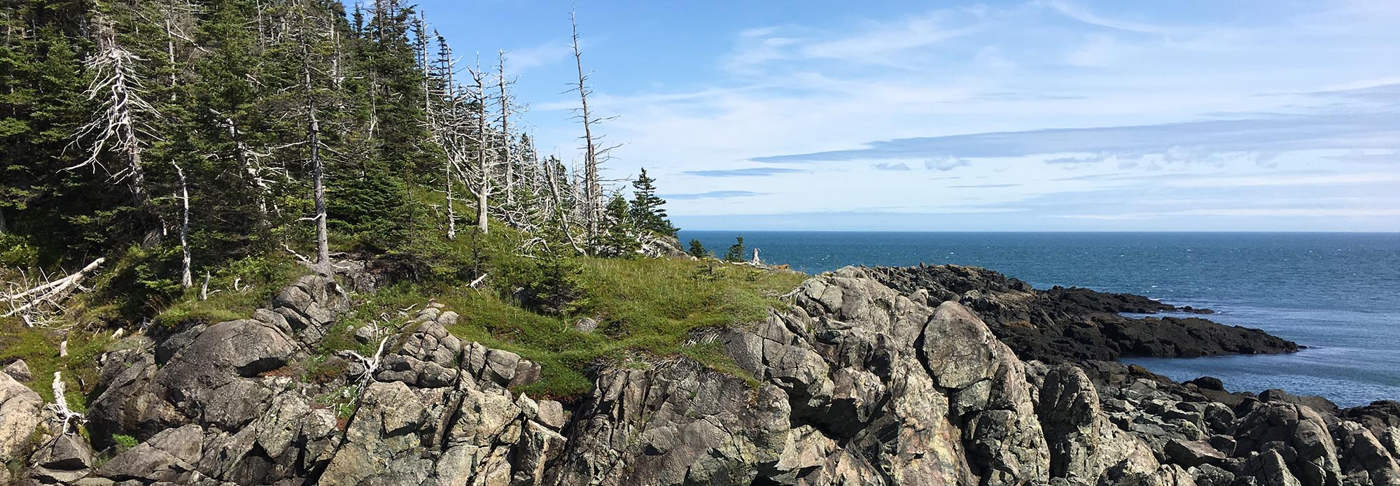 Veiw from Western Head Trail