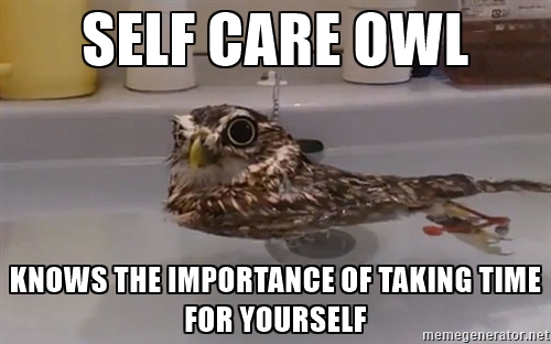 self-care owl.jpeg