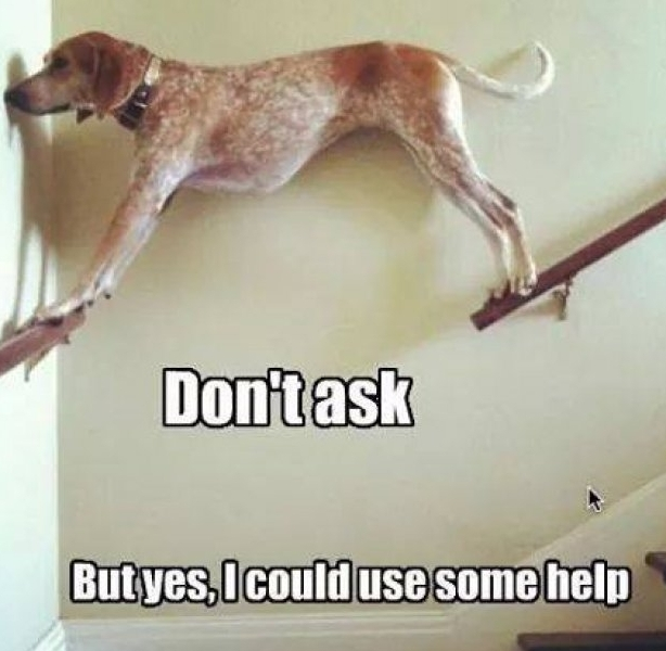 ask for help.jpg