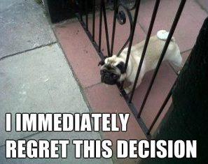 decision-regret.jpg