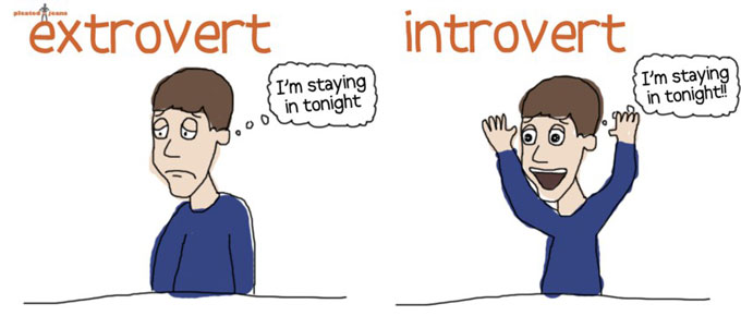 introvert-vs-extrovert.jpg
